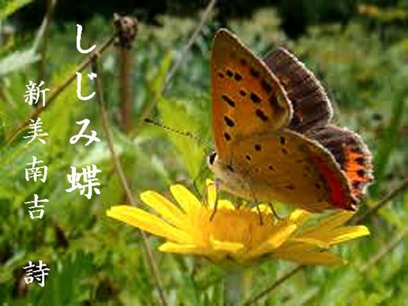 蝶」のブログ記事一覧-旅人ひと...