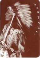 Sioux_strangehorse