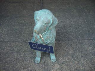 大晦日の犬