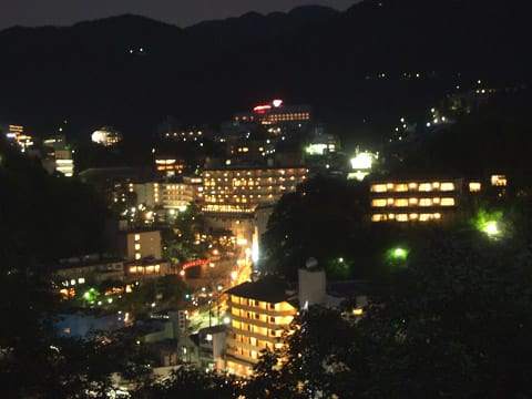 龍泉閣展望台からの夜景