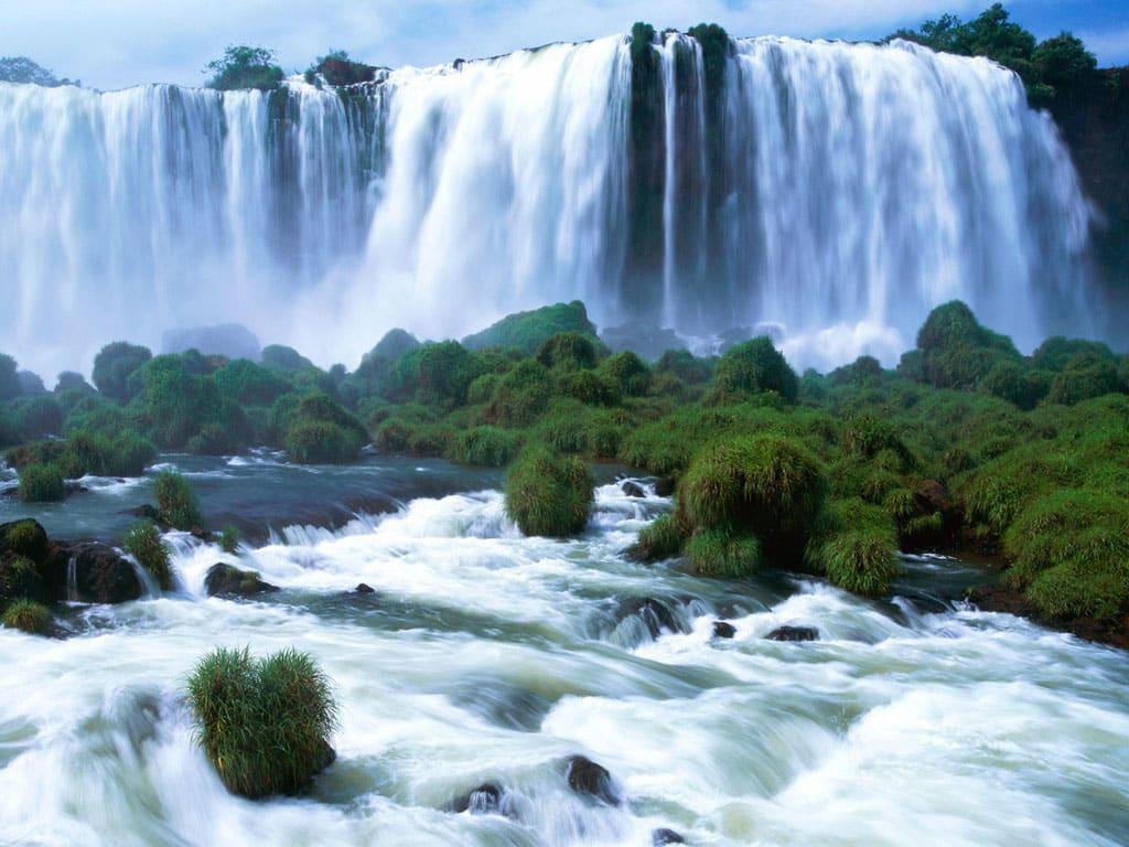イグアス国立公園 (アルゼンチン)の画像 p1_29