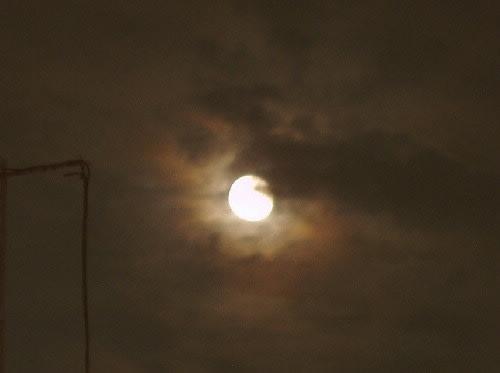 午後11時を過ぎて雲間から顔を出した月が今宵も美しい。月のきれいな夜は... 勿忘草 ( わすれ