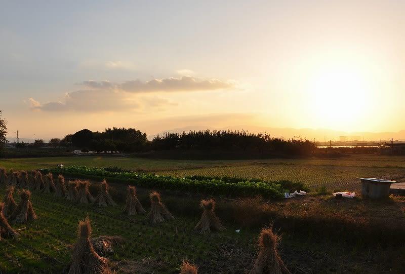 2012.11.12のマトバ古墳夕景