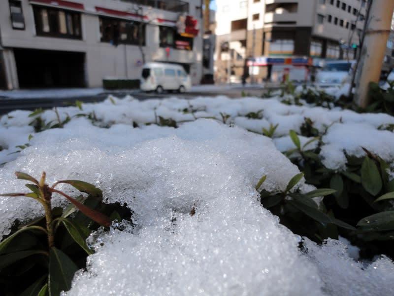 01月25日 残雪