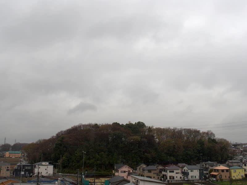 03月21日 根岸台