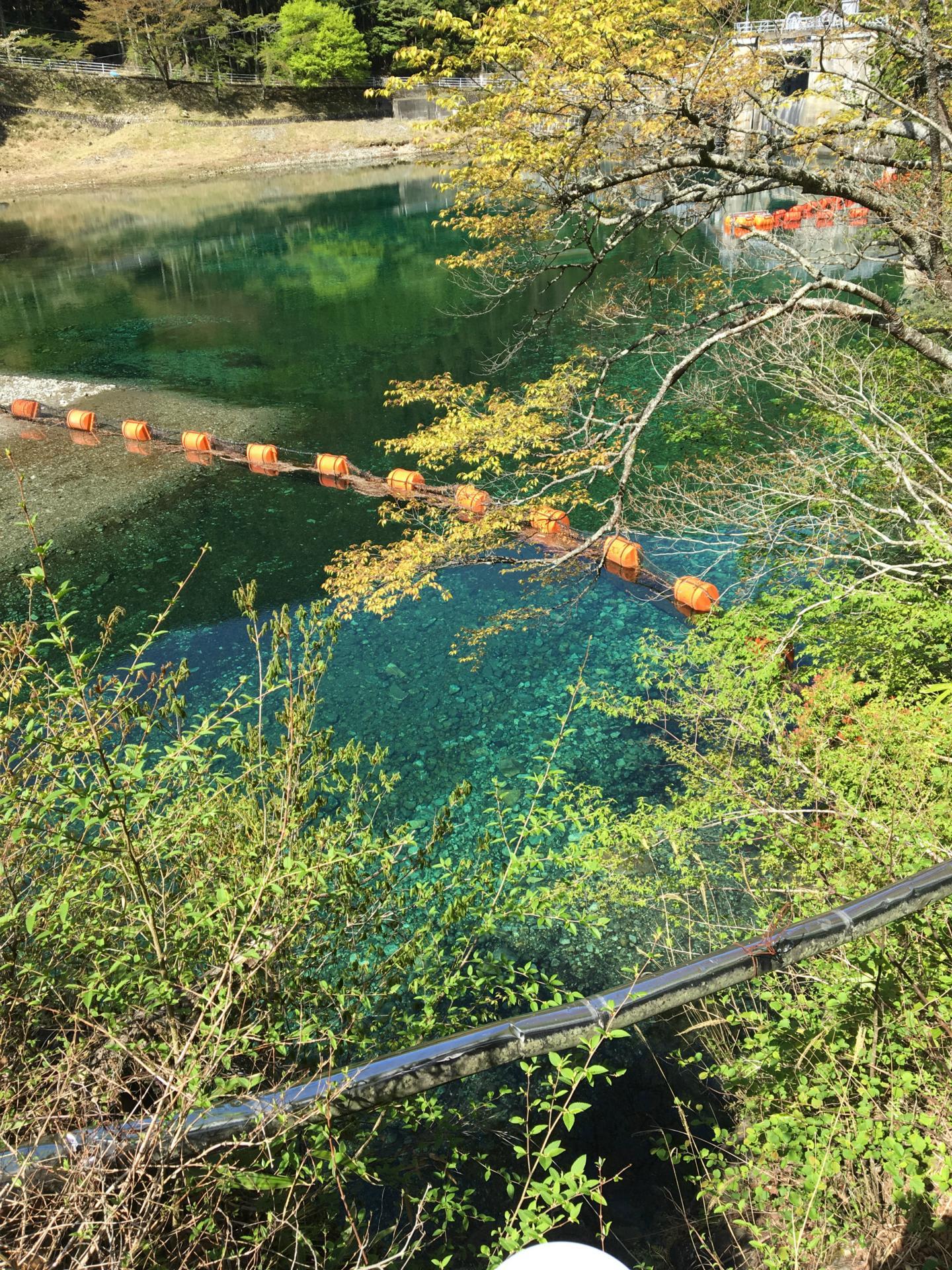 エメラルドグリーンのきれいな湖: 2016.4.26天川村奥地(緑橋付近)散策ブログ