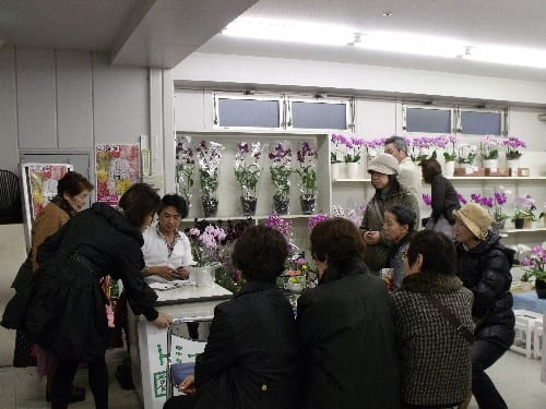 大阪総合園芸センター株式会社 の会社情報: 花屋の …