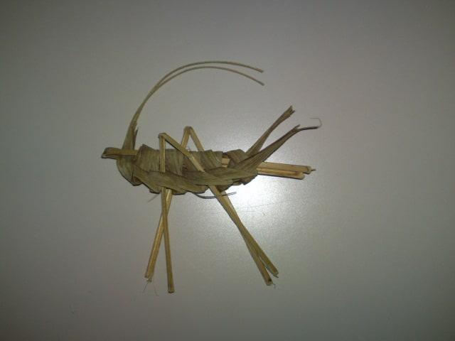110820_grasshopper01