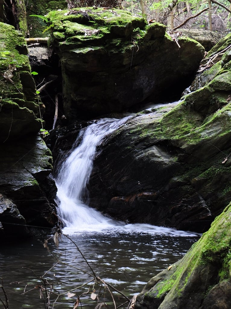 滝坂の小滝2
