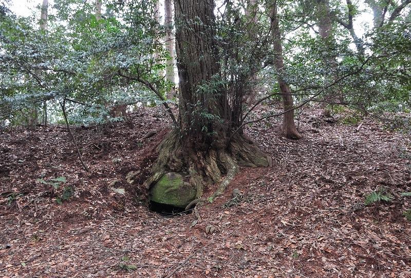 鹿高神社境内古墳前方開口部