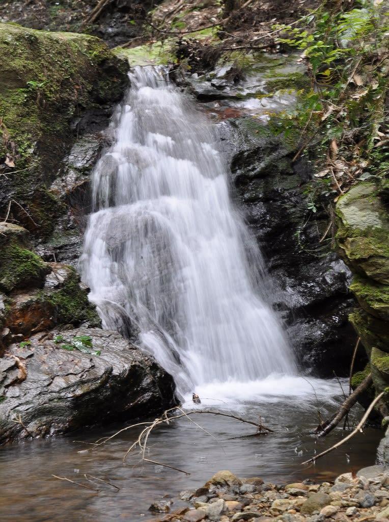 滝坂の小滝3