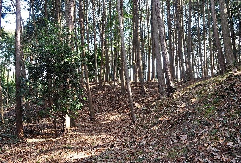 市尾宮塚古墳後円部から見た墳丘