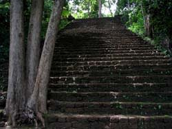 Wat Khao Phanom Phloeng階段