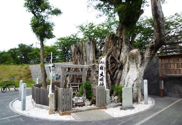 根株の前の「楠大明神」の簡素な祭殿