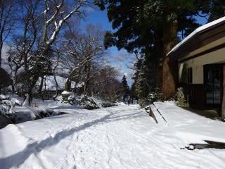 大山寺の参道。時折車の跡が。