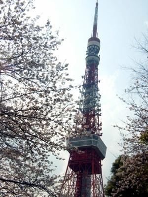 ♪桜と東京タワー