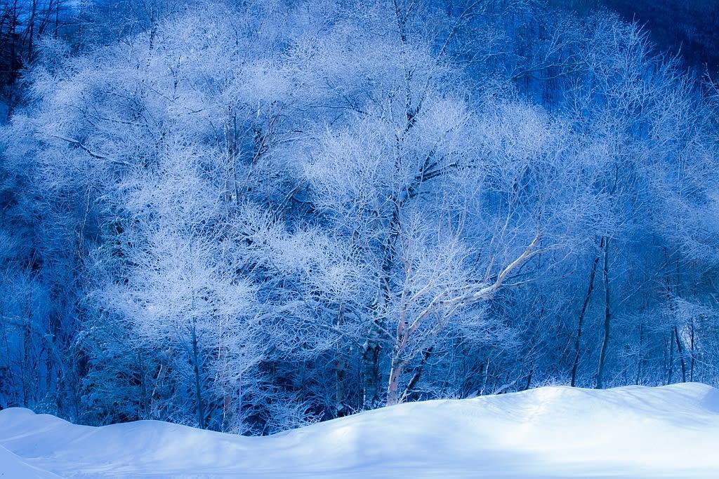 上高地の冬景色