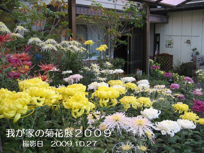 20091027_z678ns_6