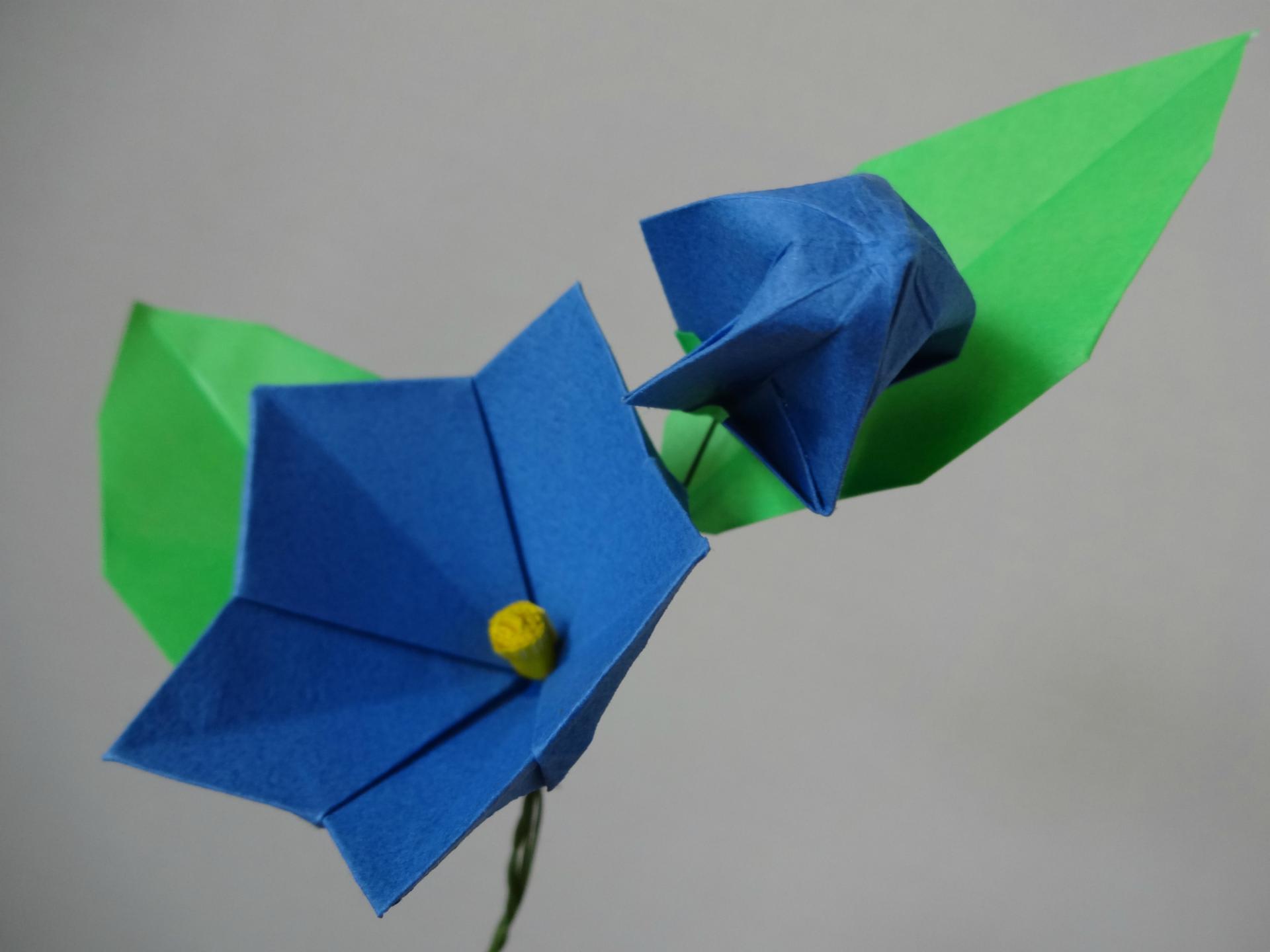 折り紙 5月の折り紙 : いろいろあって、写真のような ...