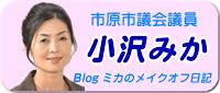 市原市議会議員 小澤美佳・ミカのメイクオフ日記