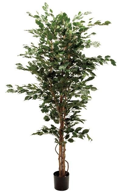 オールシーズンタイプ ベンジャミン 人工観葉植物 フェイクグリーン