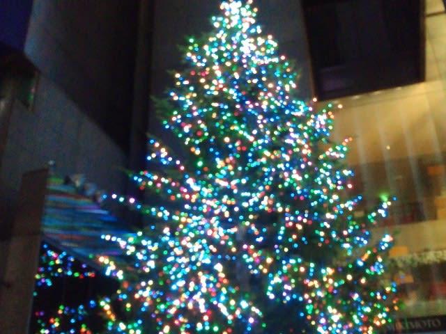 【ミキモトのクリスマスツリー】