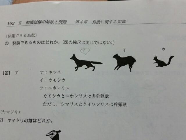 イノシシ 猟 資格