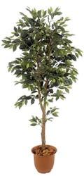 ベンジャミン フェイクグリーン 人工観葉植物造花