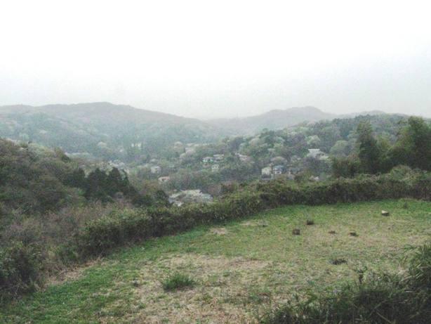 春たけなわの鎌倉:北鎌倉台峯と矢戸池散策 - 中高年の山旅三昧(その2)
