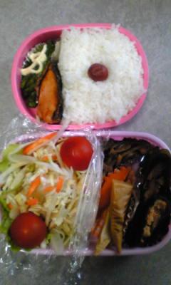 今日のお弁当[鮭の昆布締め]