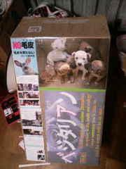 NPO個人ケイ&リルこの世界のために 全日本動物愛護連合 アニマルポリス 動物愛護党