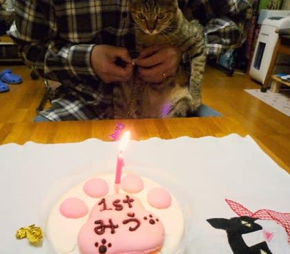 みうとたんの誕生日