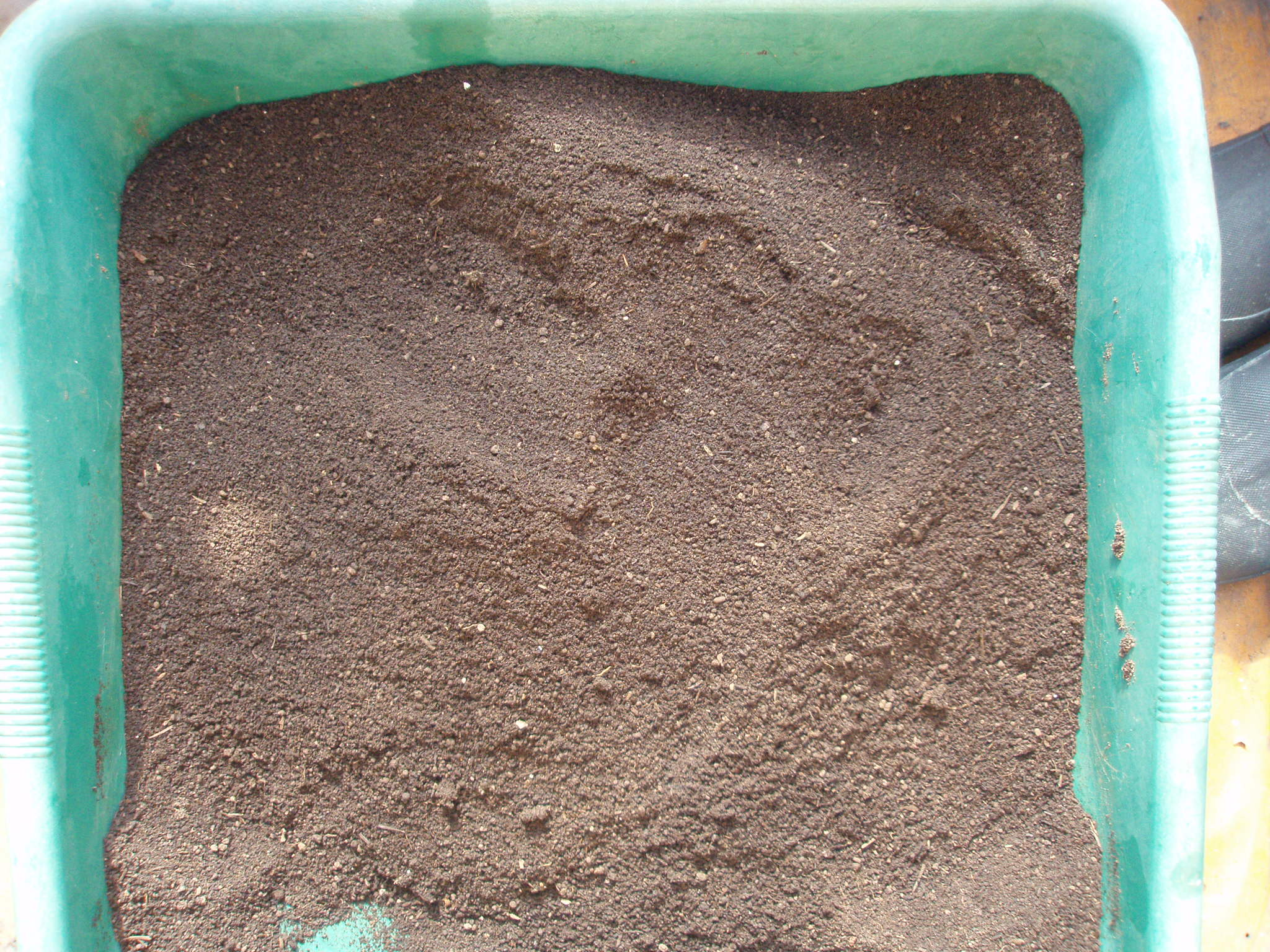 完成した培養土です。この土が苗作り用の土となります。 プラグトレイの底から土がこぼれ落ちないよう