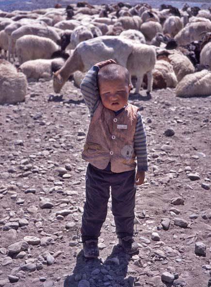 ウイグル族の子供 ウイグル族の衣類の生地 シシカバブーを焼いています 新彊ウイグル自治区4