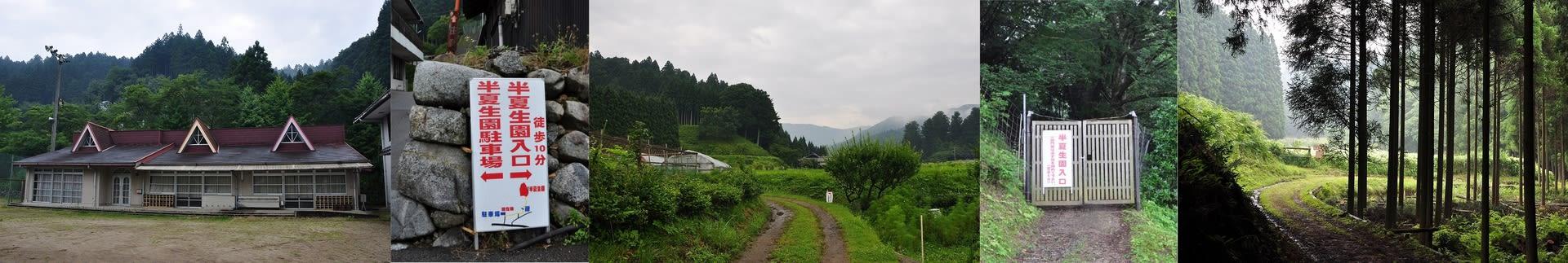 岡田の谷へ