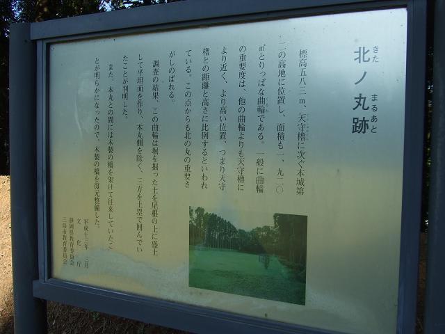 2009_10190098