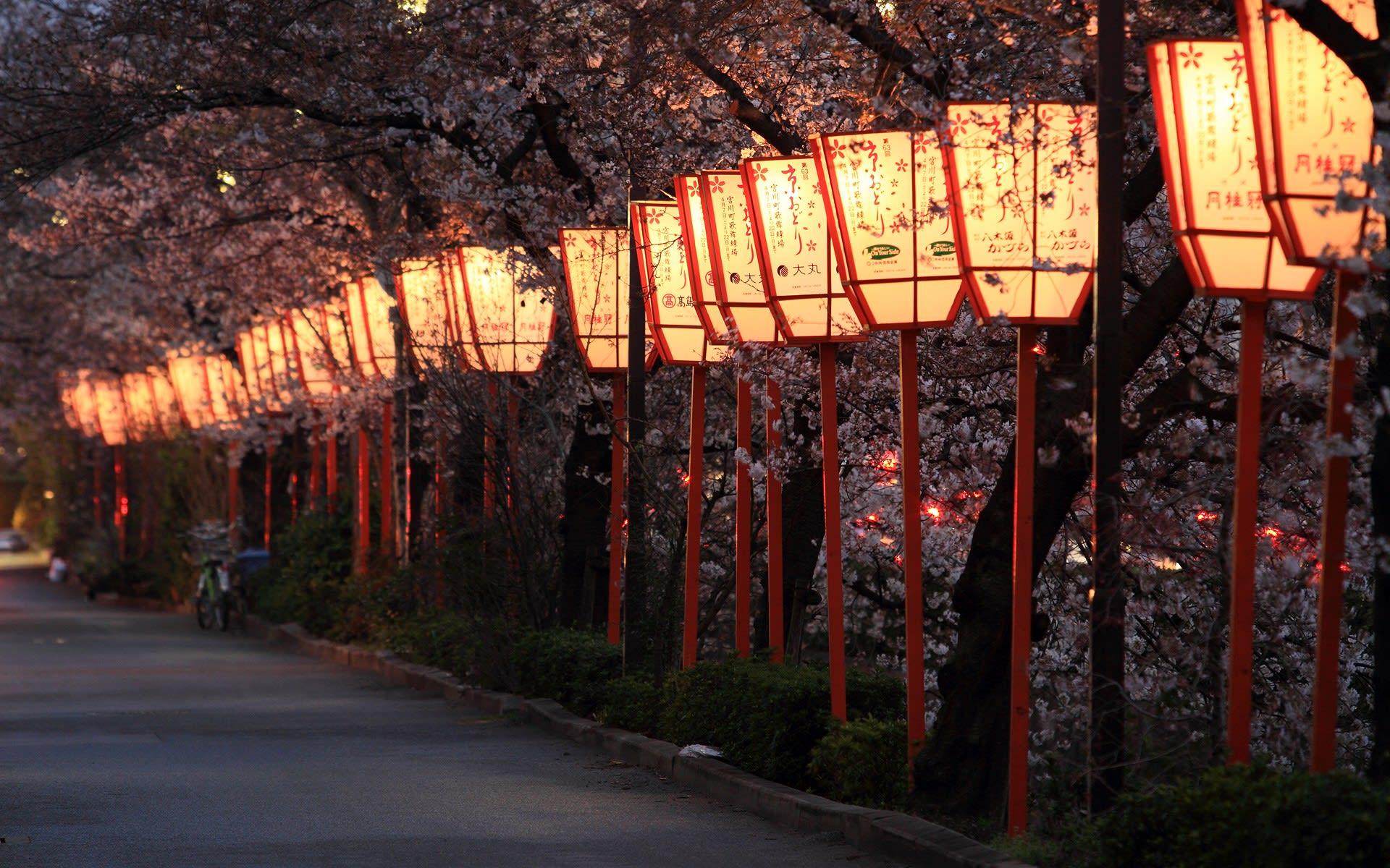 仕事終わりにそのまま京都へ。 祇園の駐車場に車を停めて移動。