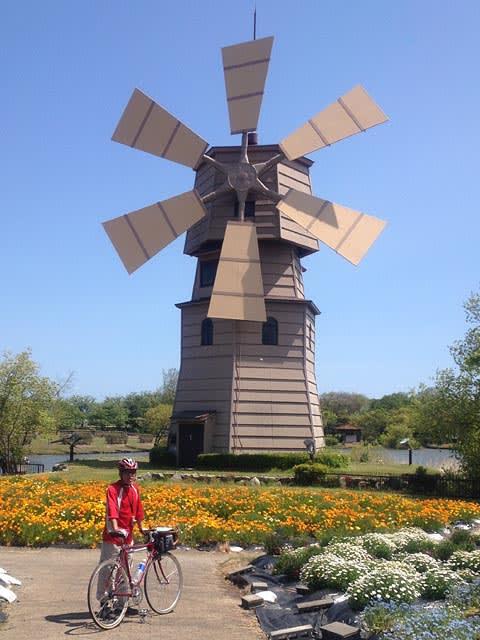 自転車の てるてる 自転車 今津 : 2013ビワイチ 但し北湖 (ぶちょ ...