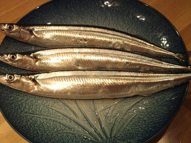 【今年の秋刀魚】