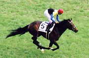 180pxdeep_impact_japanese_derby