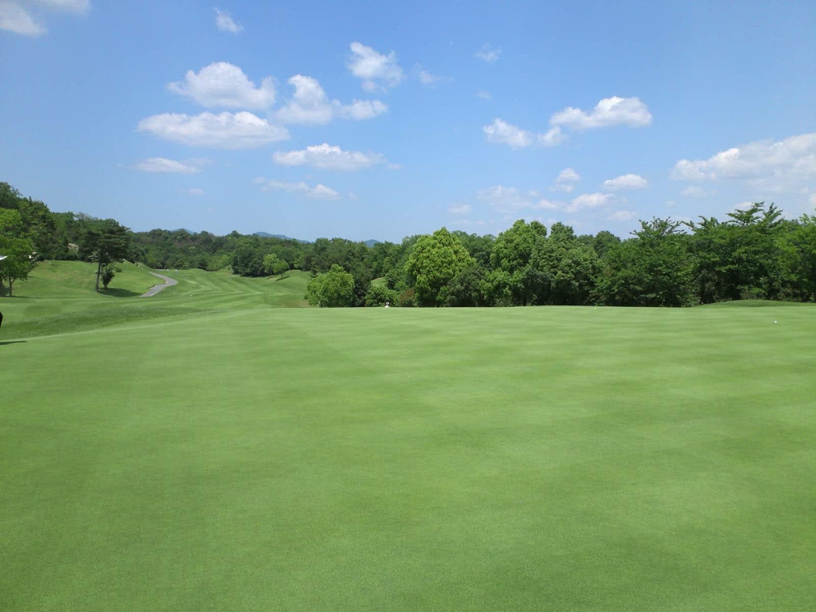 東条パインバレーゴルフクラブ(旧タイガースゴルフクラブ) - いまだ 東条パインバレーゴルフクラ