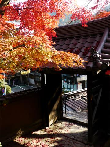有馬温泉の紅葉 善福寺