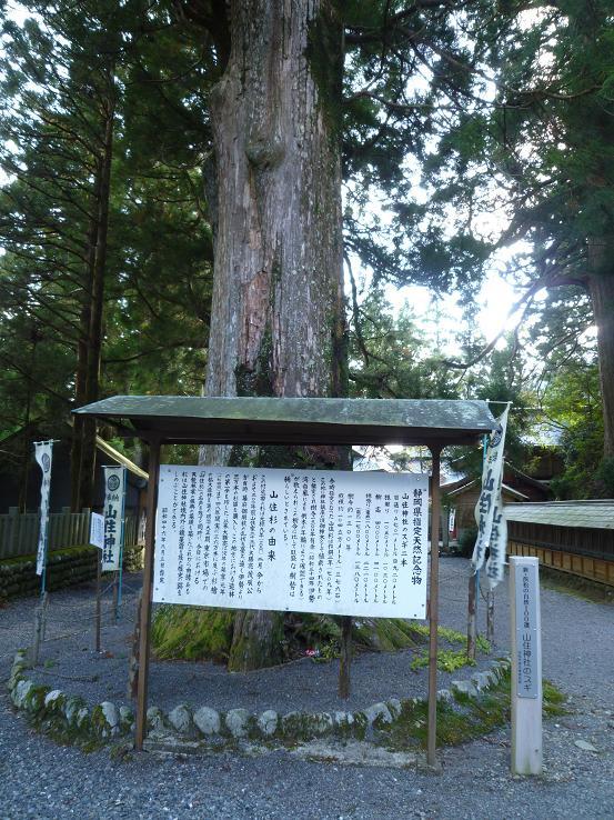 山住神社と高根城 - 伊豆(南豆...