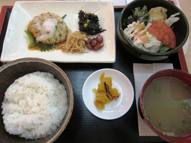 ヘルシー日替わり和膳6(とうふハンバーグてりやきおろし)