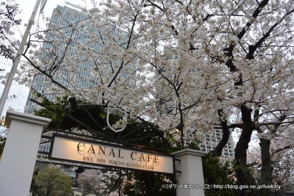 東京都内で桜が楽しめるレストラン7選