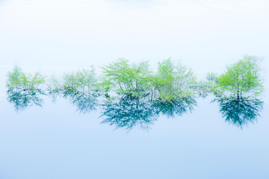 奥四万湖/浮島
