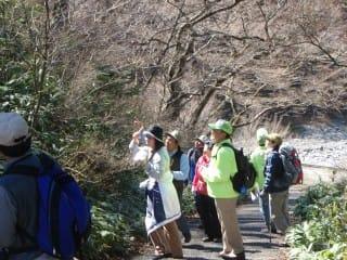 よく見る光景。これは大山を気軽に歩こう会の方々。講師は青年の家所長の鷲見先生