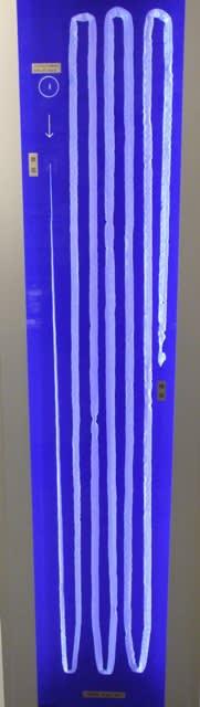 サナダムシの画像 p1_37