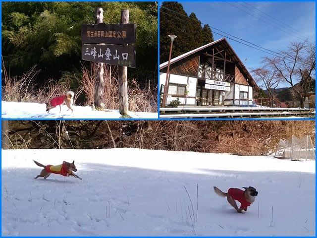鮪と雪と御杖村と。 - あんじーの日記