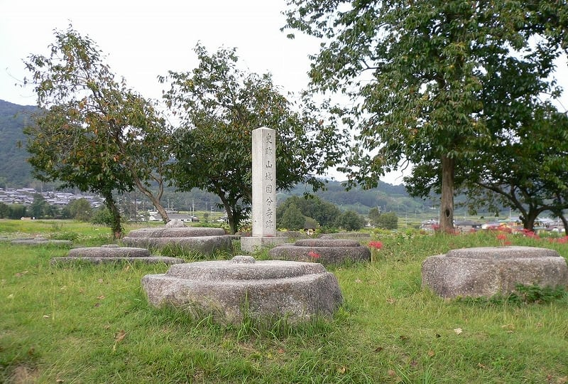 山城国分寺塔跡礎石